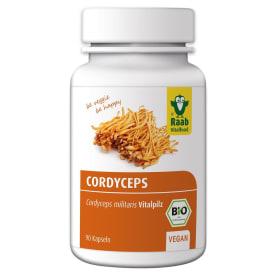Bio Cordyceps militaris Vitalpilz (90 Kapseln)
