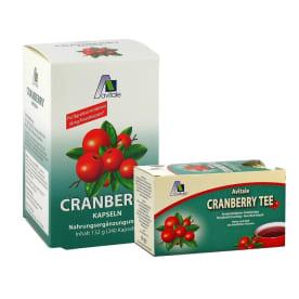 Cranberry 36mg Proanthocyane (240 Kapseln) + Cranberry Tee Filterbeutel (20 Beutel) - Gratiszugabe