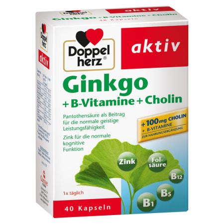 Ginkgo + Vitamin B + Cholin (40 Kapseln)