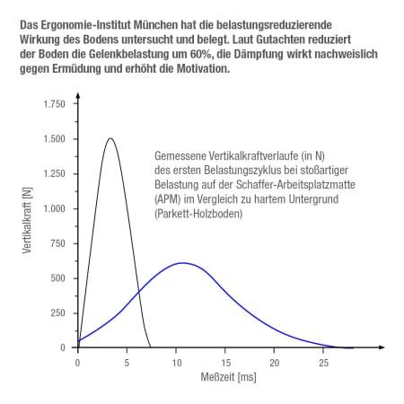 "Functional Training Bodenmatte Grau + Übungs-DVD ""Training mit dem Funktionalem Boden"""