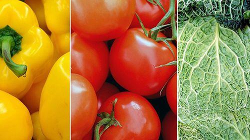 LOW CARB Ernährung - einige Basics