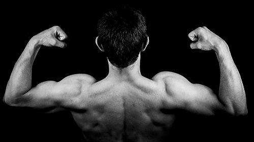 Zehn Muskel-Aufbau-Tipps