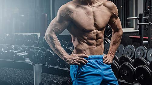 Optimal ausbilden unter Beibehalt der Muskelmasse