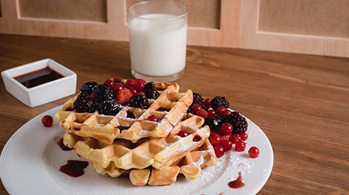 Low Carb Whey Wafels