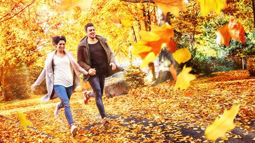 Mit unseren 7 Tipps kommst du gesund durch den Herbst & Winter